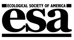 ESA Logo Mono 100%